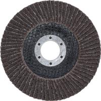Fächer-Schleif-Scheibe | Ø 115 mm | K 40